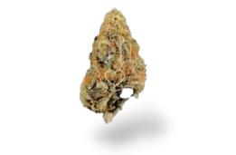 dc medical marijuana