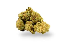 Washington dc marijuana
