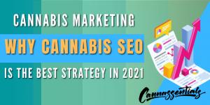 cannabis marketing with cannabis seo