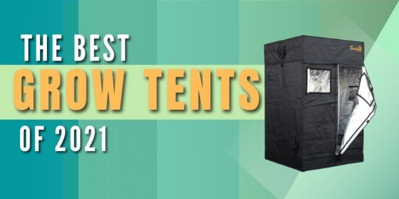 Best Grow Tent – Top 3 Picks for Great Harvest (Tested 2021)