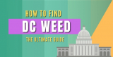 DC Weed – How to Buy Weed in DC Safely in 2021